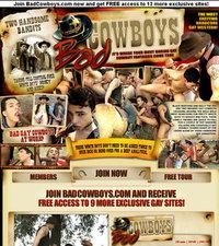 Bad Cowboys Review