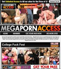 Mega Porn Access Review