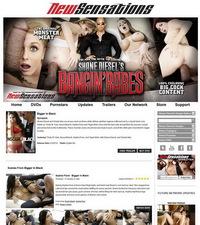 Shane Diesels Bangin Babes Members