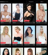 PornDoe Pedia Members